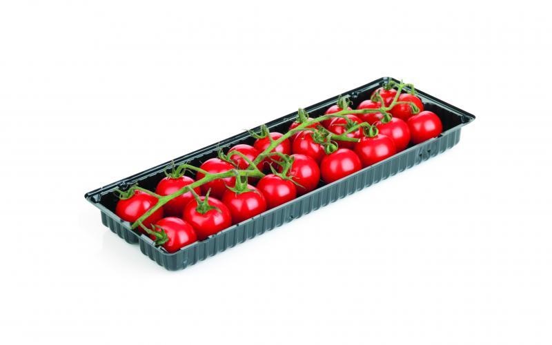 Tomaten in punnet bakje