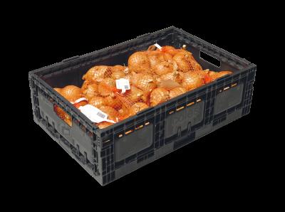Netverpakking met uien in krat